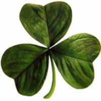 One Witch's perspective on Saint Patrick