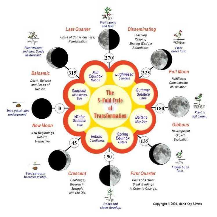 8 fold cycle